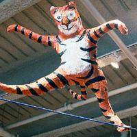 Circus 1997